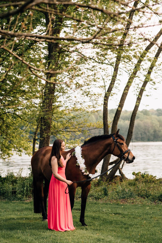 maryland equine photographer