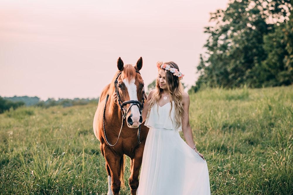 maryland horse photographers