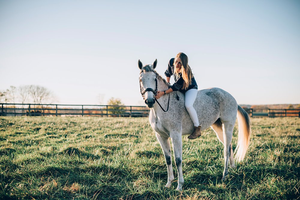 Carroll County MD equine photographers
