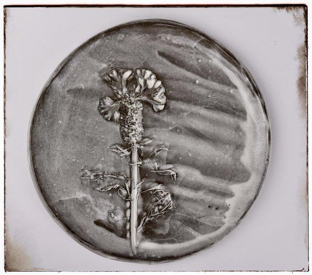 botanical tapas plate.jpg