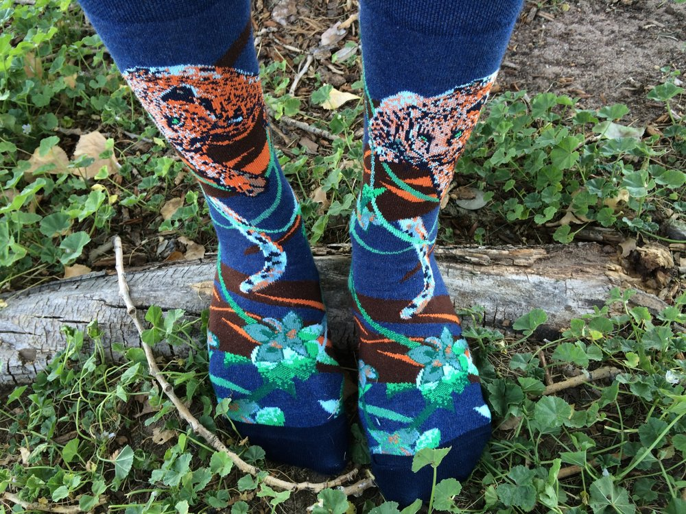 """Endangered Cats Jaguar Socks"" Style - Photo Credit: Jess Doutrich"