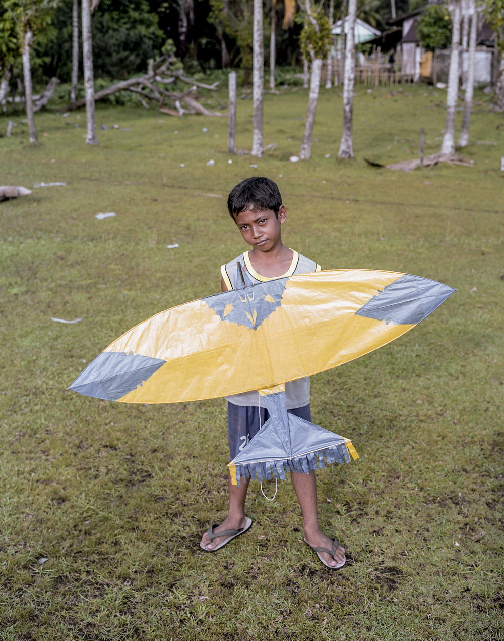 indo.kites265.jpg