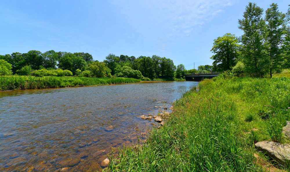 Go Walk Daily Along the Credit River and Through The Community Parks.jpg
