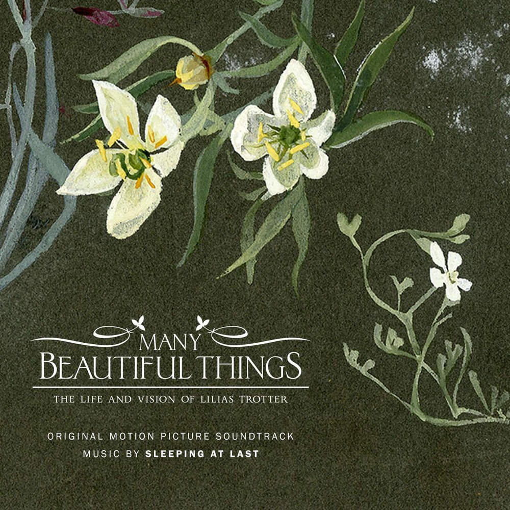 cover-ManyBeautifulThings.jpeg