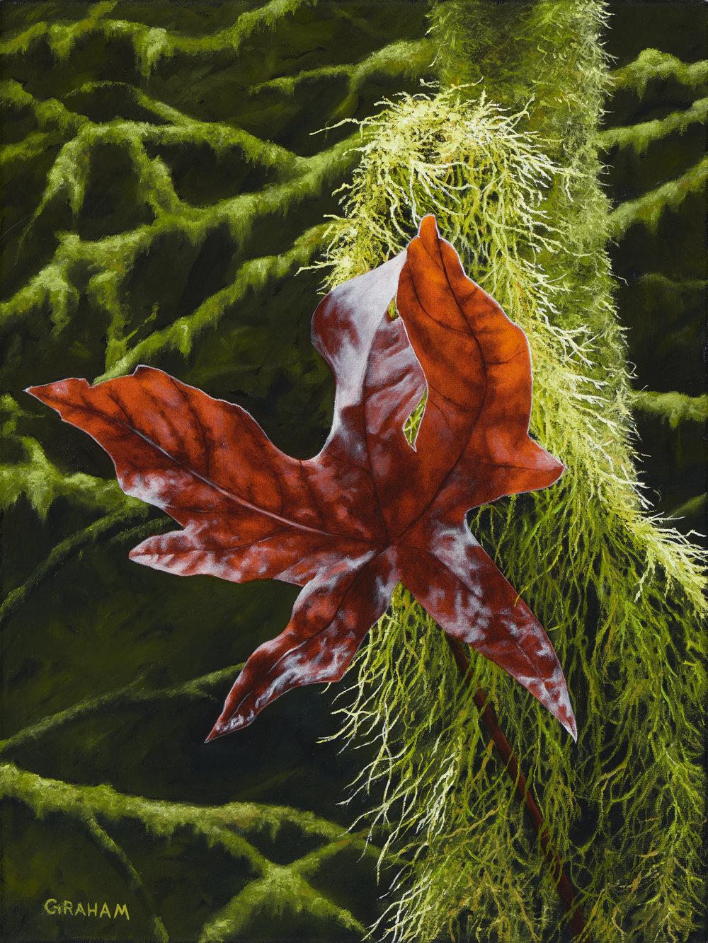 Autumn Brilliance-12x16-low res.jpg