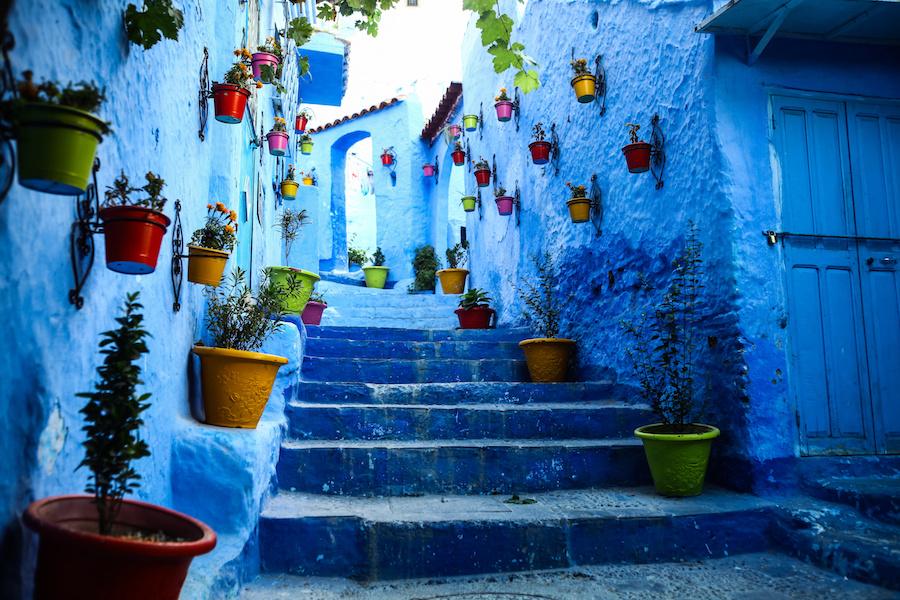 spring-in-morocco.jpeg