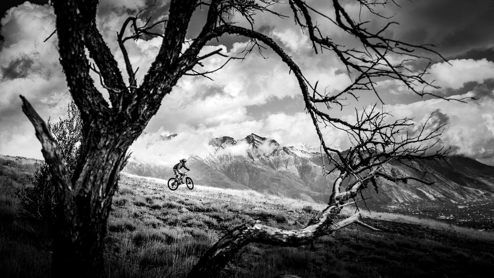 Bike Submission-2.jpg