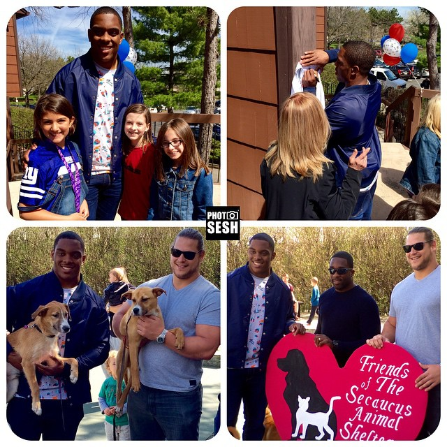 Great job w/the Animal Shelter event hosted by @therealestatemachine GMen & fans! 3dogs saved! Thousands $$$ raised #adopt #giants #iphoneonly #iphoneography