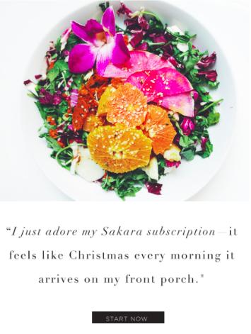 Food brands Sakara strategies