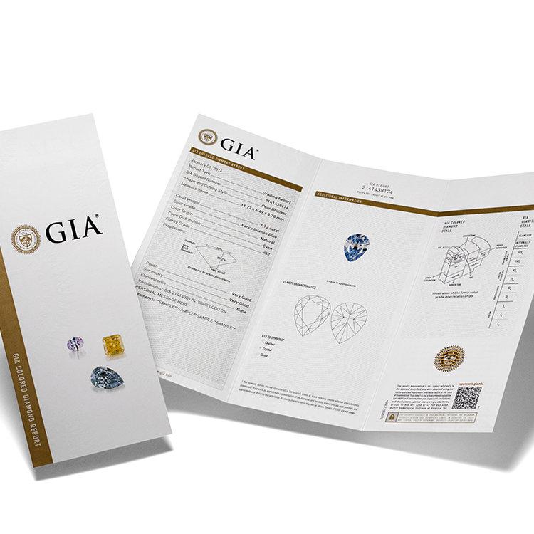 Gia Certification Hugo Haan