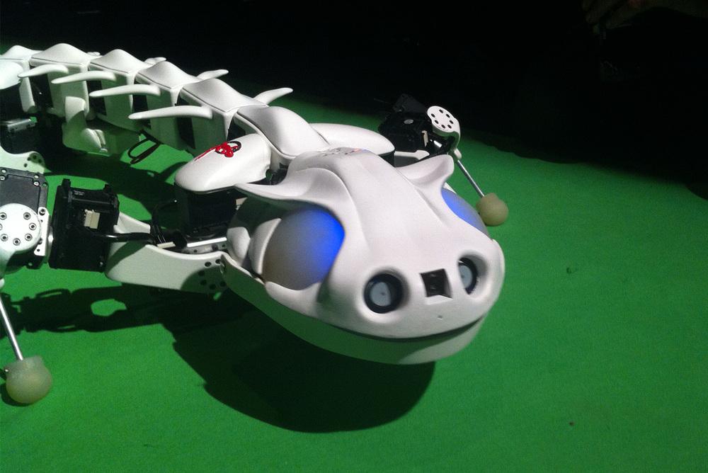 Robot-Safari-Science-Museum (6).jpg