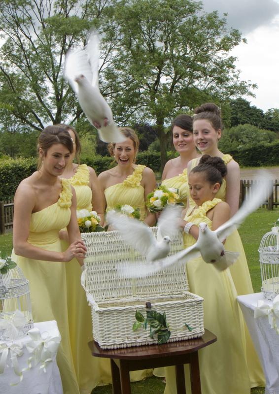 Wedding396.jpg