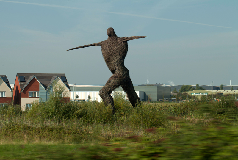 Willow Man, Bridgewater, Somerset