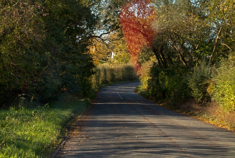 Country Lane, Worcs.