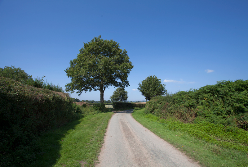 Country Lane, Pembridge, Hereforshire