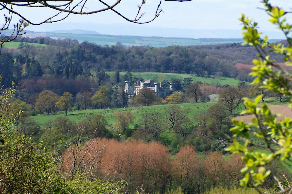 Eastnor Castle through the trees