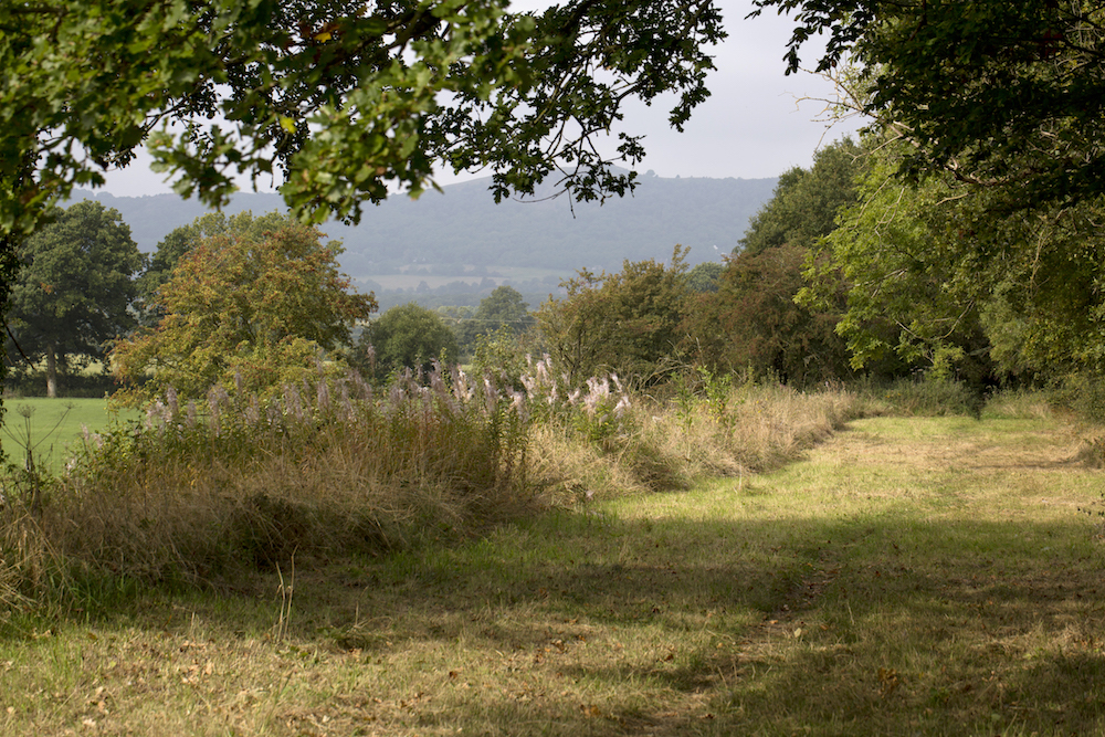 View of the Malvern Hills from Brotheridge Green
