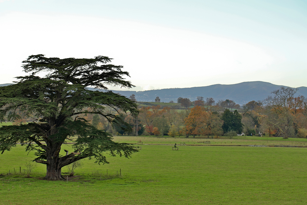 Malvern Hills from Croome Park Estate, Worcestershire