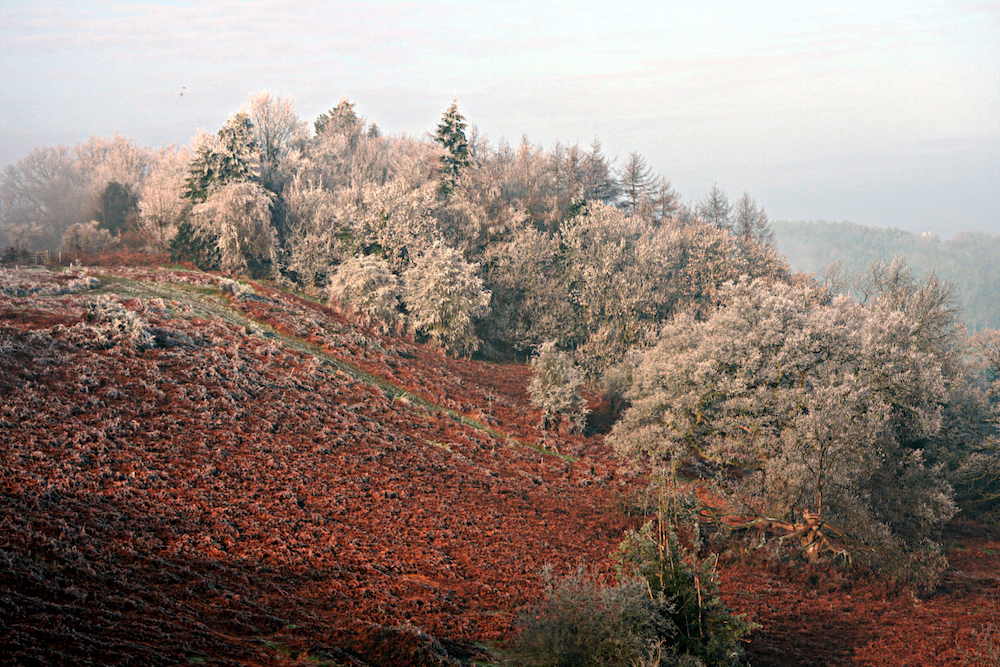 Frozen Hillside, West Malvern