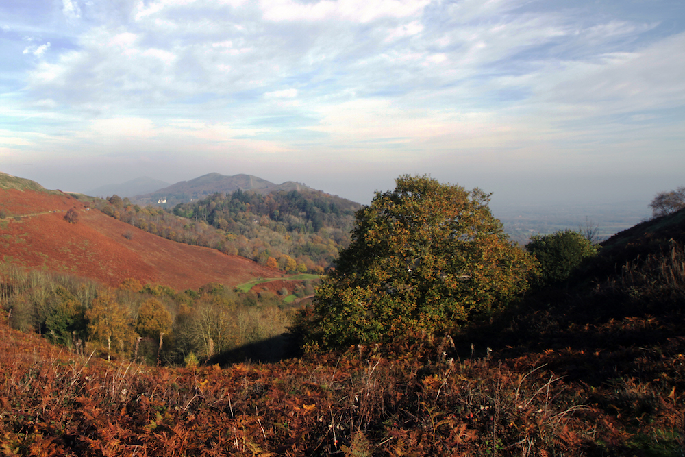 Autumn View of the Malvern Hills