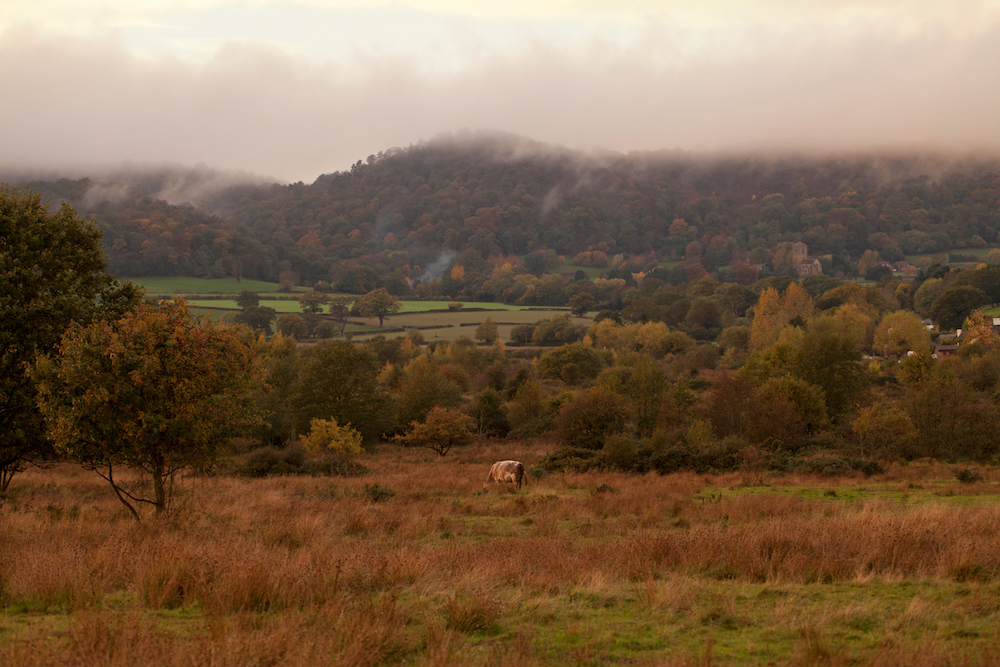 The Malvern Hills covered in cloud from Castlemorton Common