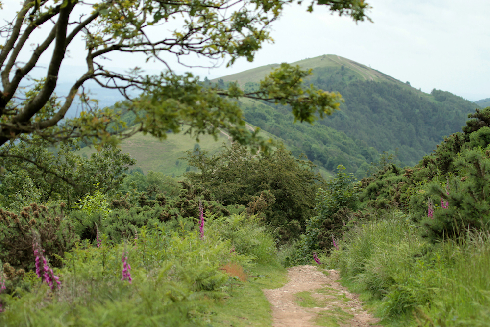 Malvern Hills path