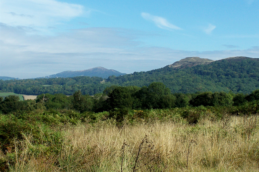 Malvern Hills from Castlemorton Common