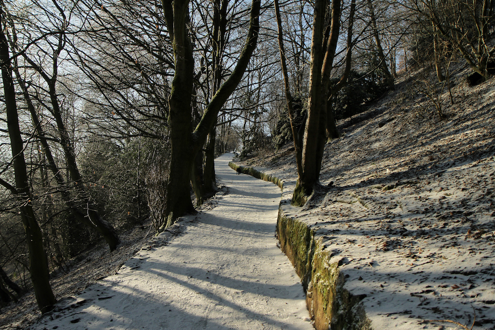 Frozen Path to British Camp