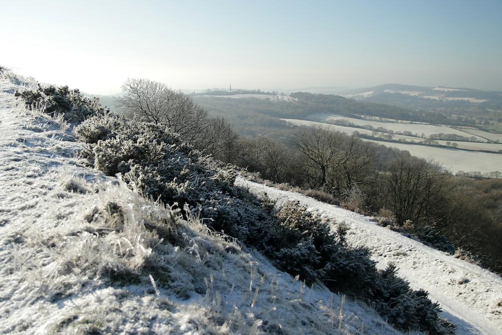 Frozen grass, Malvern Hills