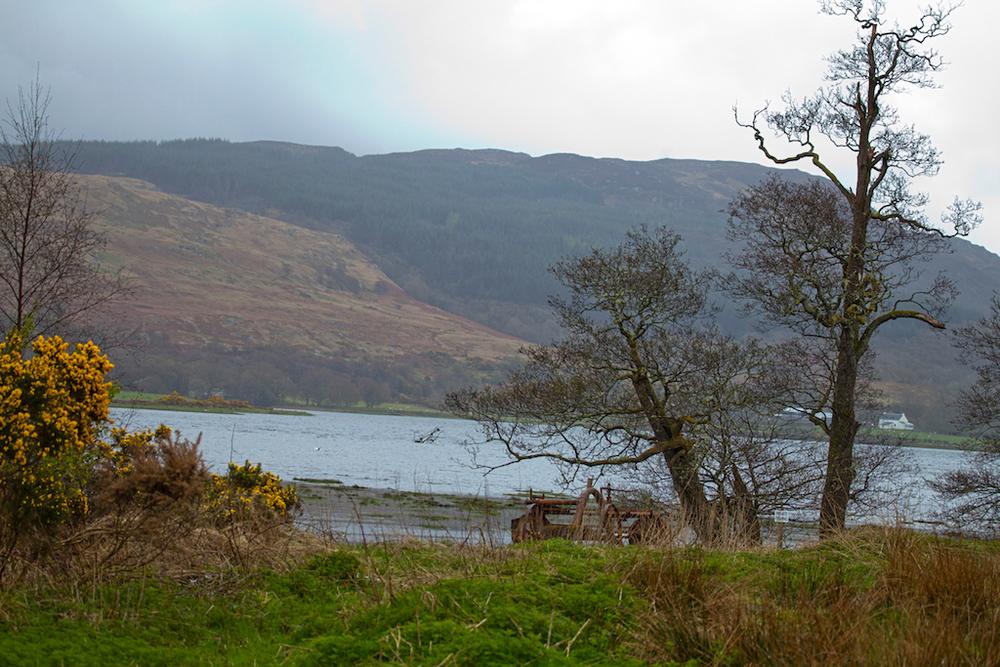 Scotland39.jpg