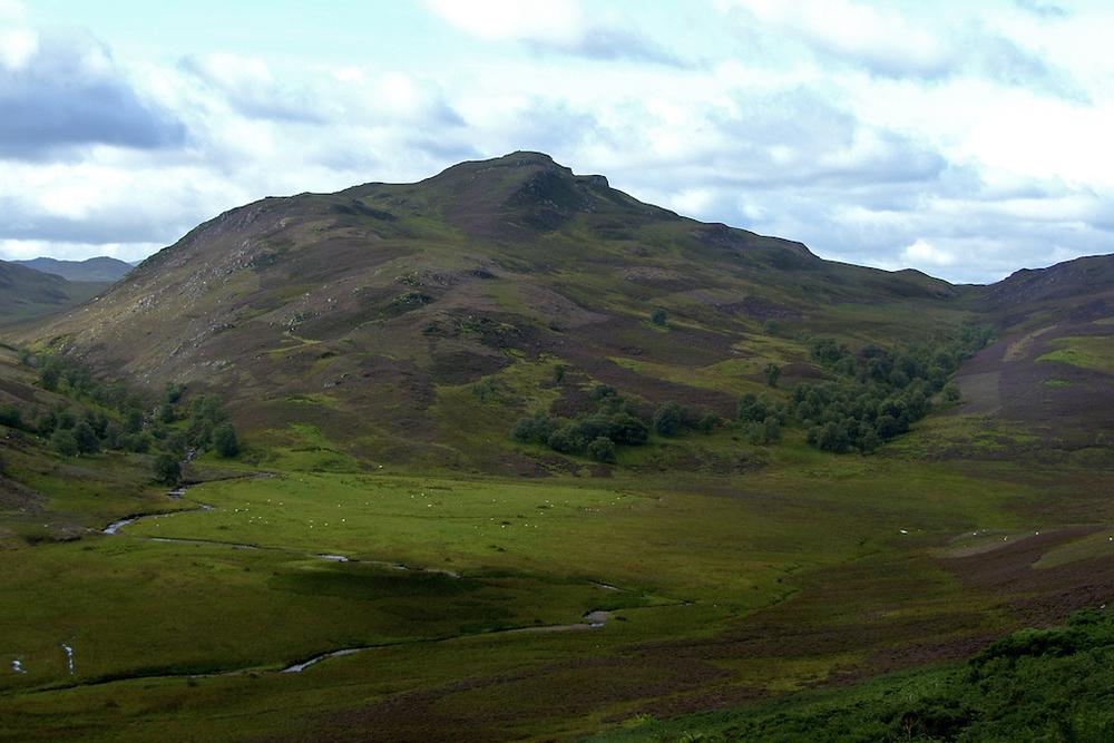 Scotland171.JPG