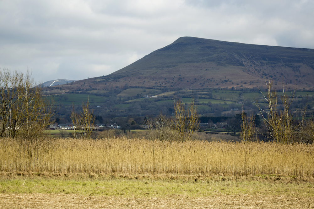 Wales9.jpg