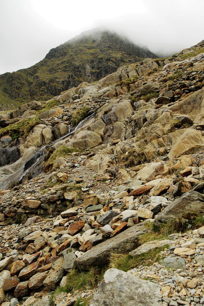 Wales81.jpg