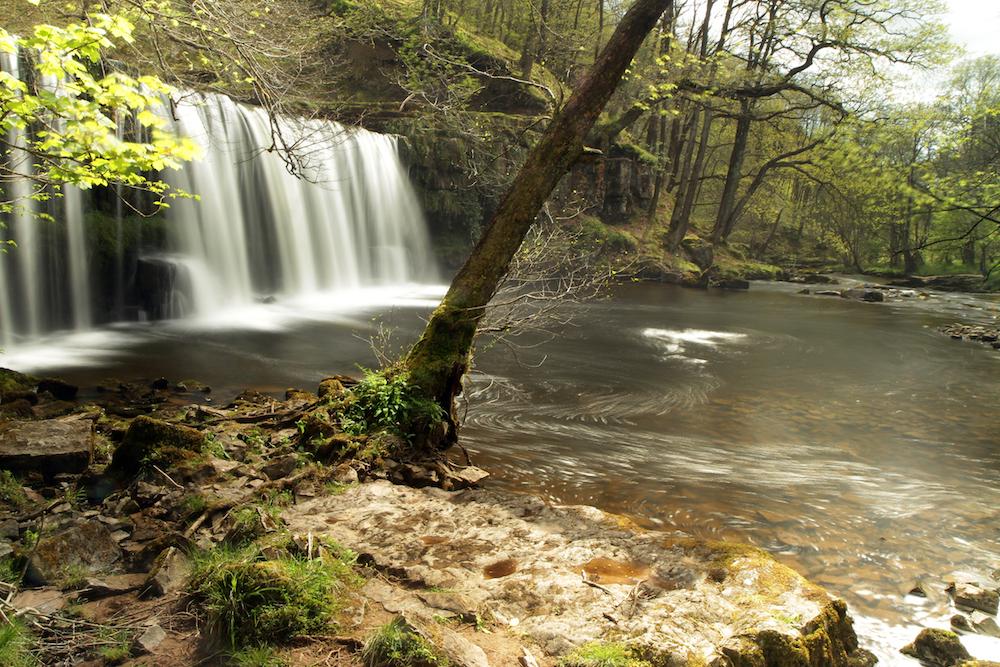 Wales113.jpg