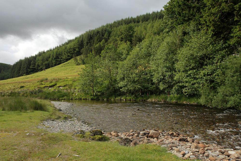Wales122.jpg