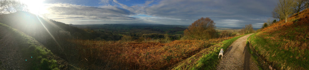 Panorama from Sugar Loaf Hill