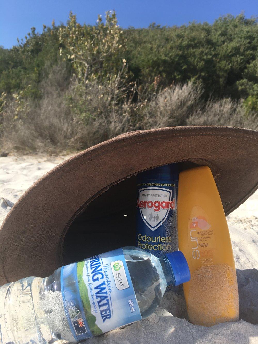 Hat, Factor 50, mozzie spray & water!