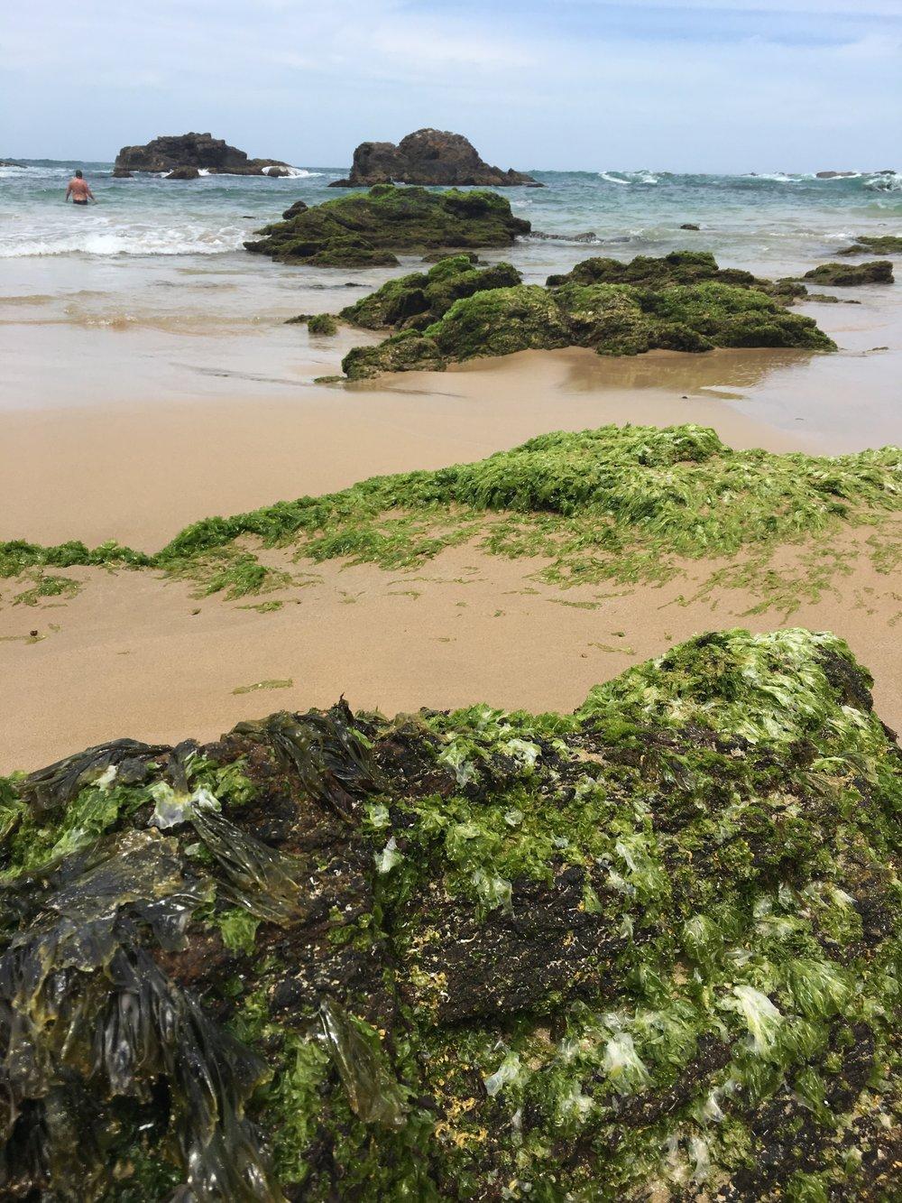 Mystery Bay NSW