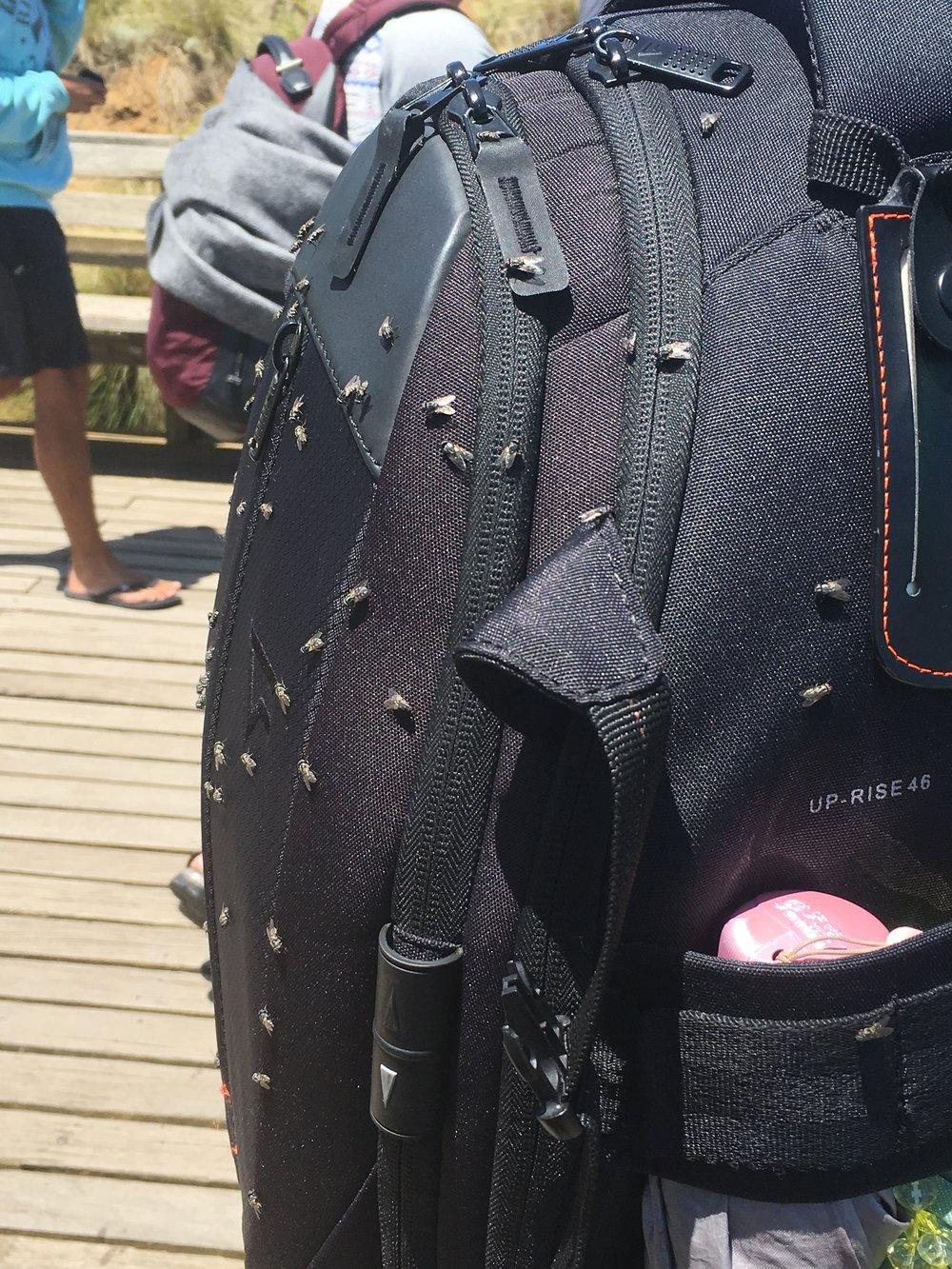 A tourists back pack!