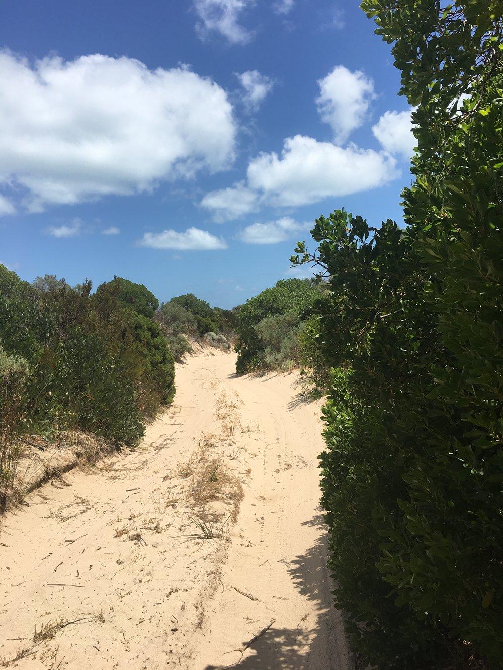 Bit of dune climbing
