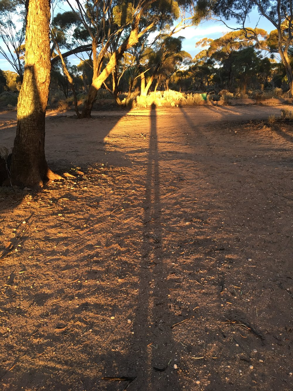 Long shadow at last!