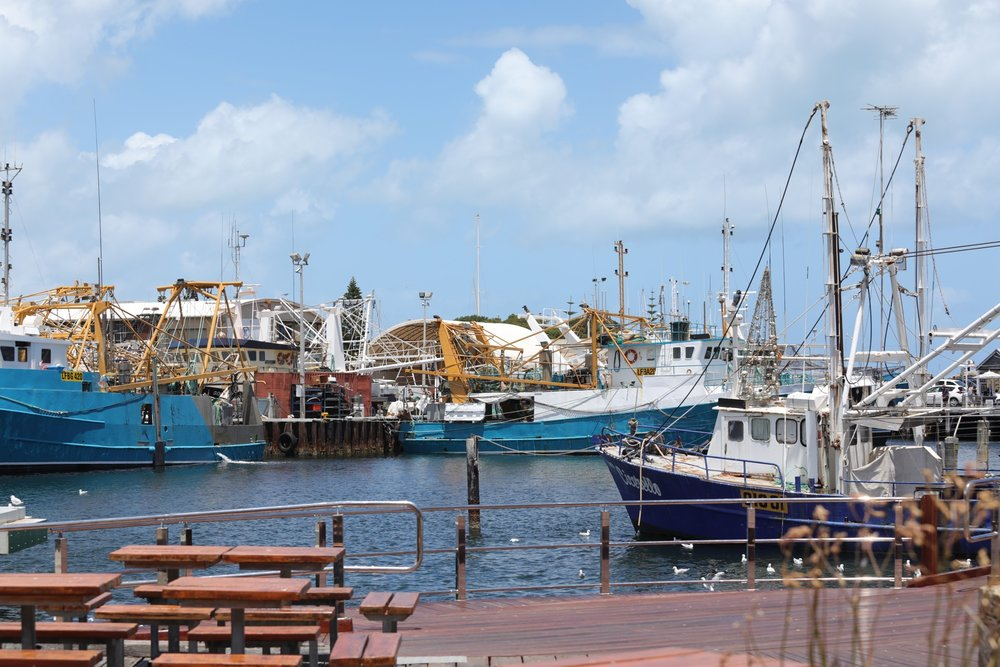 Freemantle harbour