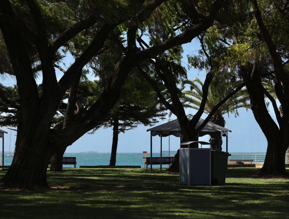 Beautiful shady park area next to the beach, complete with free gas barbecue facilities