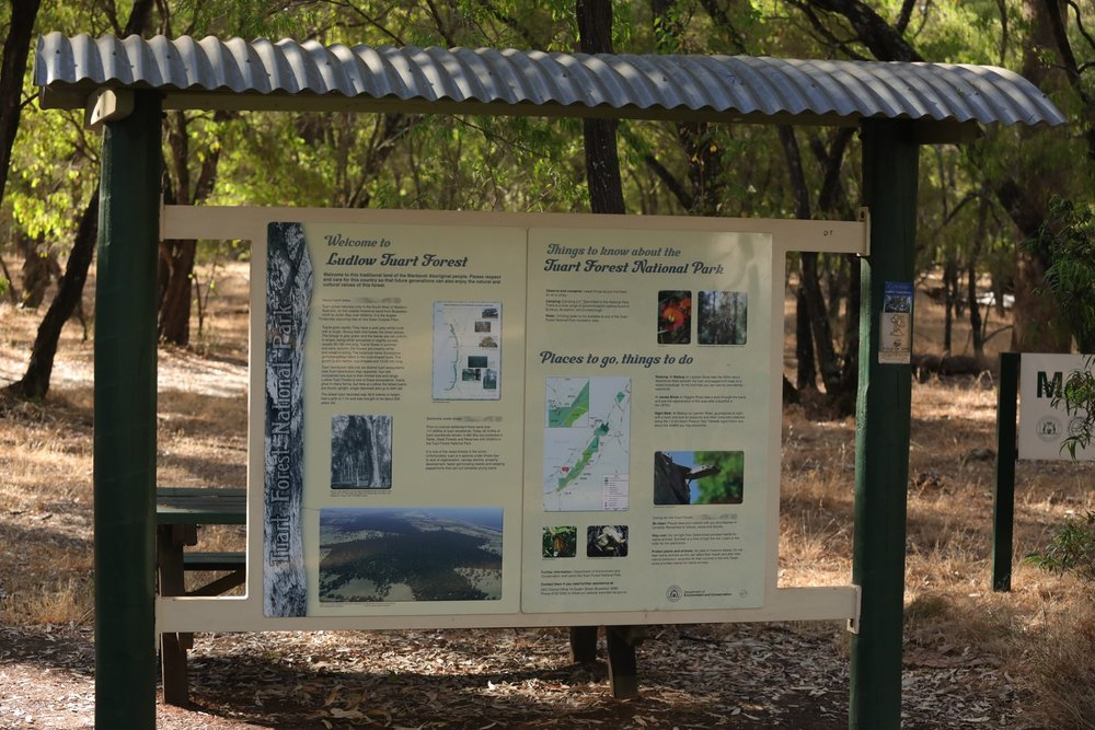Tuart Forest National Park  https://en.m.wikipedia.org/wiki/Tuart_Forest_National_Park