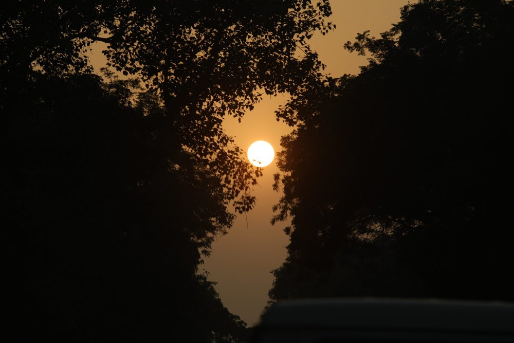 Another beautiful Delhi sunset