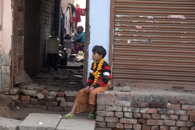 Boy with yellow garland, Agra, Uttar Pradesh, India