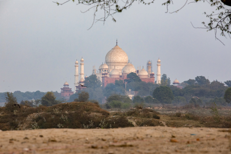 Taj Mahal from a distance, Agra, Uttar Pradesh, India