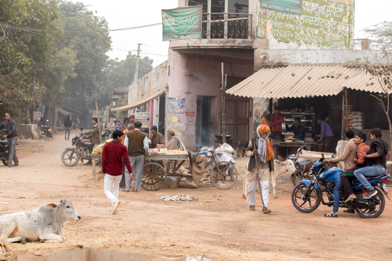 Mathura, Uttar Pradesh, India