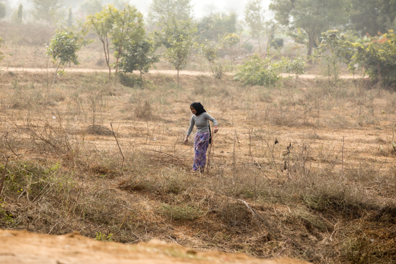 Lady in field, Palwal, India