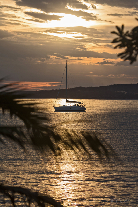 Yacht at sunset, Twofold Bay, Eden, NSW Australia
